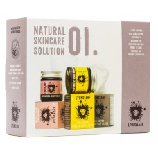 Natural Skincare Solution 01